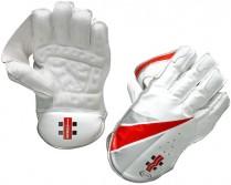 Elite Wicket Keeping Gloves
