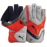 Puma Evospeed 1 wk gloves