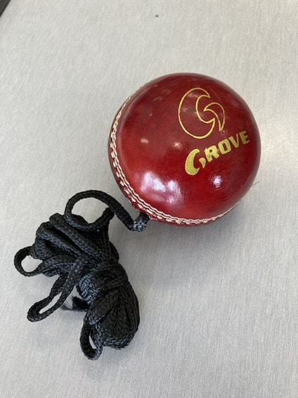 Grove Cricket Australia Shop