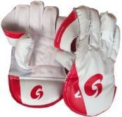 Grove V Wicket Keeping Glove