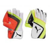 Puma Evospeed 1 wicket keeping gloves