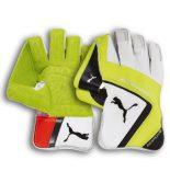 Puma evoSPEED 4-wicket-keeping-cricket-glove
