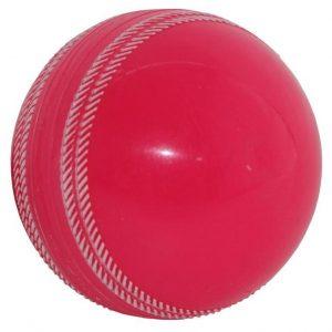 Gray Nicolls Fusion Cricket ball pink