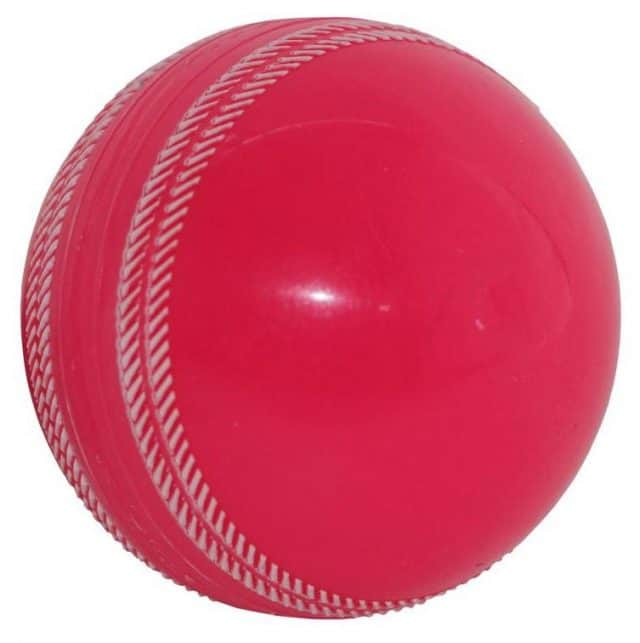 Gray Nicolls Fusion Cricket ball pink